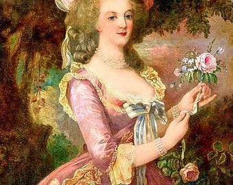 Lovely Marie Antoinette Pink Rose Reproduction Fabric Crazy Quilt Block Free Shipping World Wide (M8