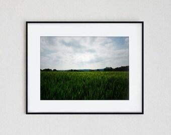 GREENER PASTURES | fine art photo print, wall art, modern photography, landscape, nature, minimal, minimalist, field, summer, surreal