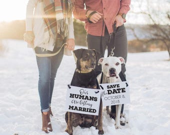 2 Engagement Announcement Signs for Dogs | Save The Date Sign + Our Humans Are Getting Married | Personalized | Wedding Announcement 1893 BW