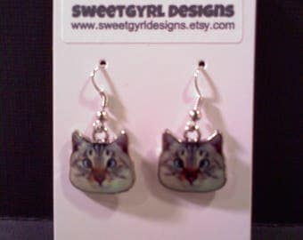 CAT Earrings- Derp!