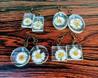 Preserved English Daisy Earrings - Oval - Round - Square - Rectangle Resin Pieces - Bronze Ear-wires, Preserved Nature Jewelry