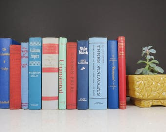 Red and Blue Book Collection // Vintage Eclectic Set of 11 Curated Retro Books Decorative Spines Bookshelf Fillers Wedding Decor Centerpiece