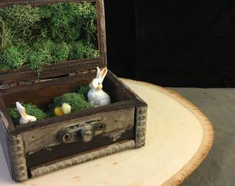 The Warren: Fairy Box