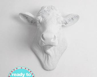 Quick Ship! Faux Taxidermy Cow Head Wall Art Decor. From White to Black Farm / Country Decor. By White Faux Taxidermy (Mon-Thurs*)