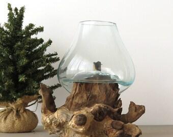 Glass on Wood Terrarium, Molten Glass on Teakwood, Organic Modern