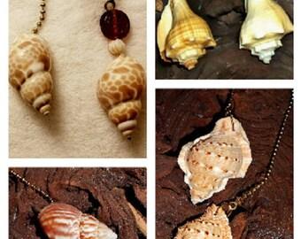 Coastal Beach Inspired Handcrafted Seashell Fan Light Lamp Pull Frog Whelk Fairy Snails Babylonia Seashells