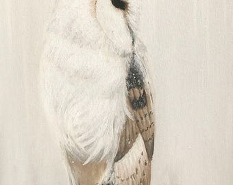 White Owl Print // Winters Guard // Gallery Quality Giclée Print // Tony Rector Art // 12 x 16 Size // Snow White Bard Owl