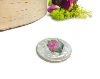 1 Rough Raw Watermelon Tourmaline Crystal Pink Green 3.0 CT Gemstone