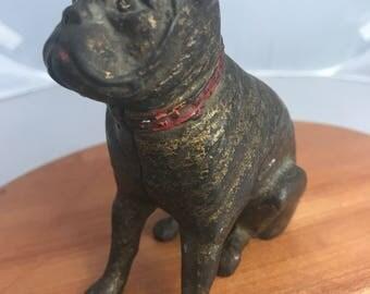 Antique Boxer/ Pit dog cast iron bank
