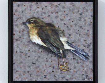 Dead Bird / Original Oil Painting / Sarah Becktel