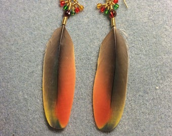 Orange, red and yellow macaw feather earrings adorned with tiny dangling red, green, and amber Czech glass beads.