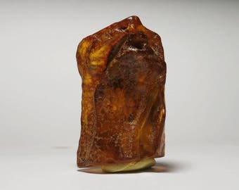 P67 / amber piece natural insect inclusion