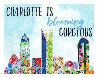 Charlotte Sky Line