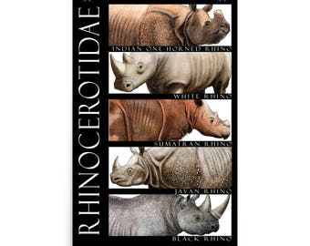 Rhinos of the World Poster