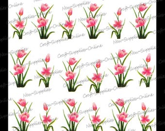 Flowers of pink tulips M920 transfers