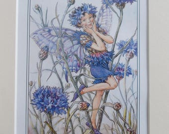 CORNFLOWER Flower Fairy, Cecily Mary Barker in 10in x 8in Ivory Mount VINTAGE 8in  x 6in  Print