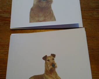 2 x IrishTerrier cards.