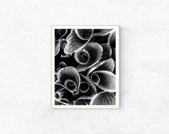 Wall Art Poster, Home Decor Digital Print, Printable Wall Art, Botanical Print, Leaves Poster, Black and White Art Print, Housewarming Gift