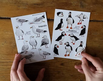 Puffin or Seagull sticker sheets by Alice Draws The Line; great for children's birthday party bags. A6 sheets of seabirds stickers