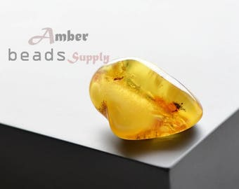 Baltic amber stone. Natural amber piece. 1 unit. 0352