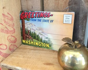 Vintage Washington State Postcard Book// Unused