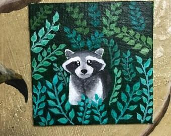 Raccoon's Ferns