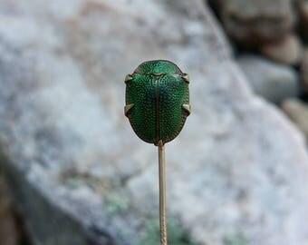 Victorian Scarab Stick Pin