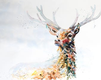 """Stag """"Pretender to the Throne"""" - Limited Edition Mounted Giclee Watercolour print 61.5 x 46.5cm from an original painting by Karen Thomas"""