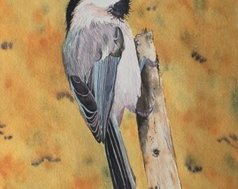 Chickadee Watercolor, Wildlife Painting, Nature Art