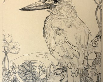 The Kingfisher Original Illustration A3 Drawing