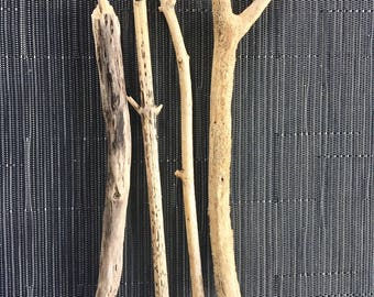 4 Driftwood branches - wood branches, seawood, driftwood