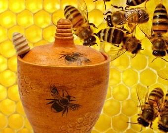 Honey Pot/ Home Decor/Funky Bee/Handmade/Ceramic/Pottery/Kitchen