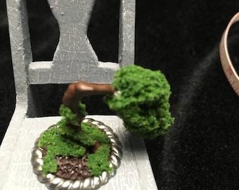 Miniature Bonsai tree (small)
