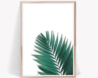 Botanical Print,Palm Leaf Print,Botanical,Art Prints,Leaf,Wall Art,Leaf Print,Palm Leaf,Large Wall Art,Green,Wall Decor,Poster,Printable Art