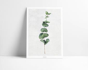 Cartel / planta Nº. 1