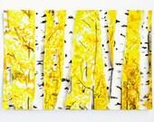 Aspen Art Postcard, 4 x 6 Inch Card, Birch Trees, Aspens in the Fall, Yellow Art Print, Watercolor Print, Tree Print, Nature Illustration