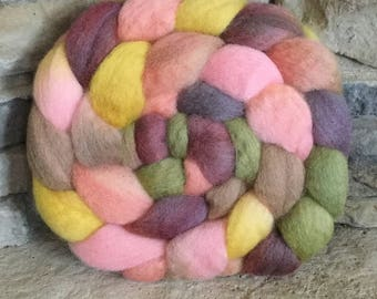 BFL Combed Top Spinning Fiber - Hand Painted - Feltable - approx. 4 ounces - ENGLISH COTTAGE