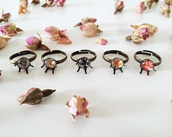 Outlet-40% botanical rings-ring with botanical illustrations