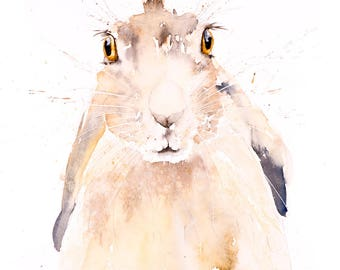 Hare No.4 - Signed limited Edition Print