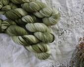 Lichens daughter - Hand Dyed Yarn - Sock Yarn - Fingering Yarn - Superwash Merino / Nylon - 100 gms