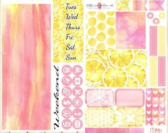 Pink Lemonade Mini Kit