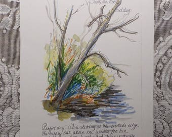 Tree Art, nature art, sketchbook page, artist notes, Kitty Hawk, Sandy Run Park, Outer Banks art, gift for naturalist
