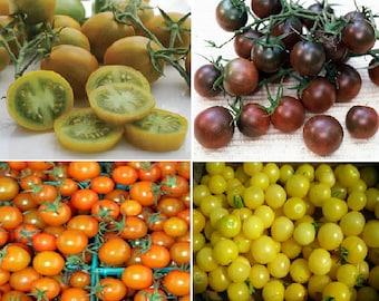 Cherry Tomatoes (4 Variety)