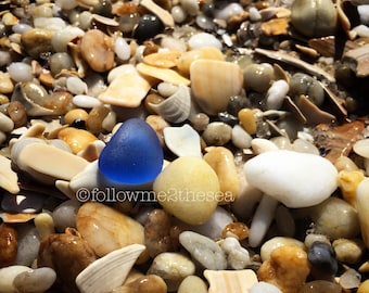 Sea Glass Photo~Stand Alone