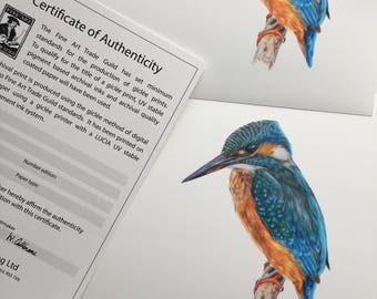 Limited Edition 'River Keeper' Kingfisher Print Artwork Picture