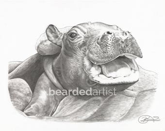 "8.5x11"" OR 11x17"" Print of Fiona the Hippo from the Cincinnati Zoo"