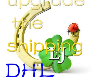 DHL upgrade the shipping 4-8day reach