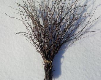Bundle of Birch Twigs,Birch Tree,Birch Branches,White Birch,Arrangement,Wall Art,Rustic Decor,Fall,Wreath Material,Wedding Decor,Christmas