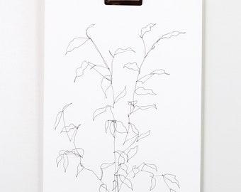 Blind Contour Botanical Line Drawing 2
