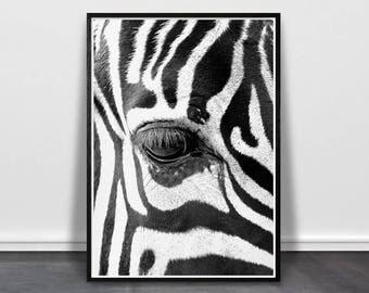 Fathers Day Gift, Zebra Print, Nursery Wall Art, Large Printable Art, African Animal Poster, Safari Nursery Decor, Digital Download Print
